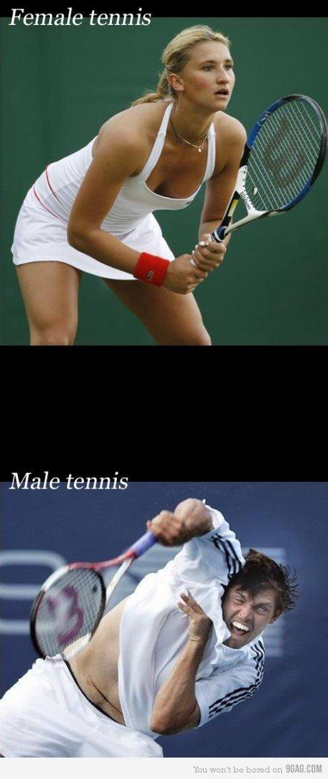 Tennis. . Female tennis Male tennis