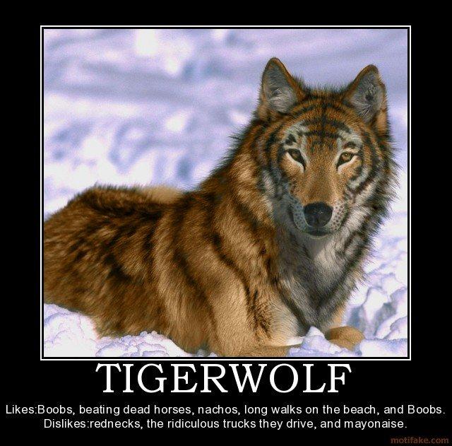 Tigerwolf. Description: Fricken awsome. TIGE' Likes. Boobs, beating dead horses, nachos, long walks en the beach, and Boobs. the trucks they drive, and mayonais