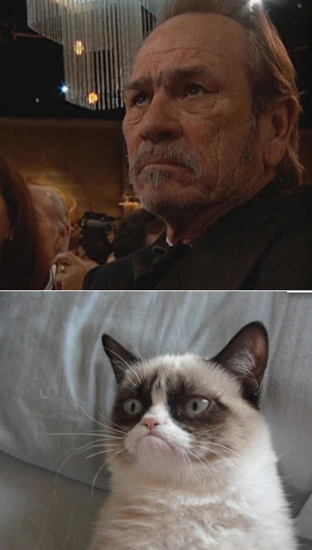 Tommy Lee Jones Looks Like Grumpy Cat. www.buzzfeed.com/ryanhatesthis/tommy-lee-jones-looks-exactly-like-grumpy-cat.. Hmmm. I guess that really is how he smiles....