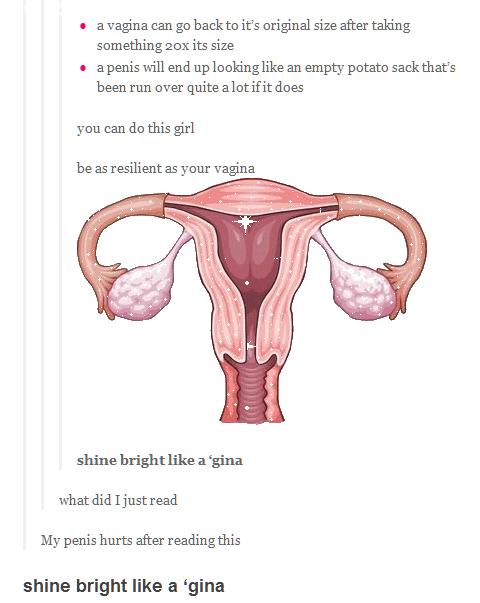 Tumblr. Shine bright like a 'gina... what?