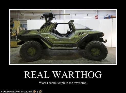 Warthog. .