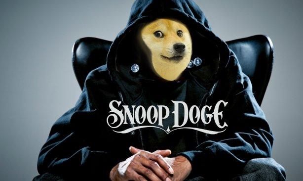 Wassup doge. My first OC.