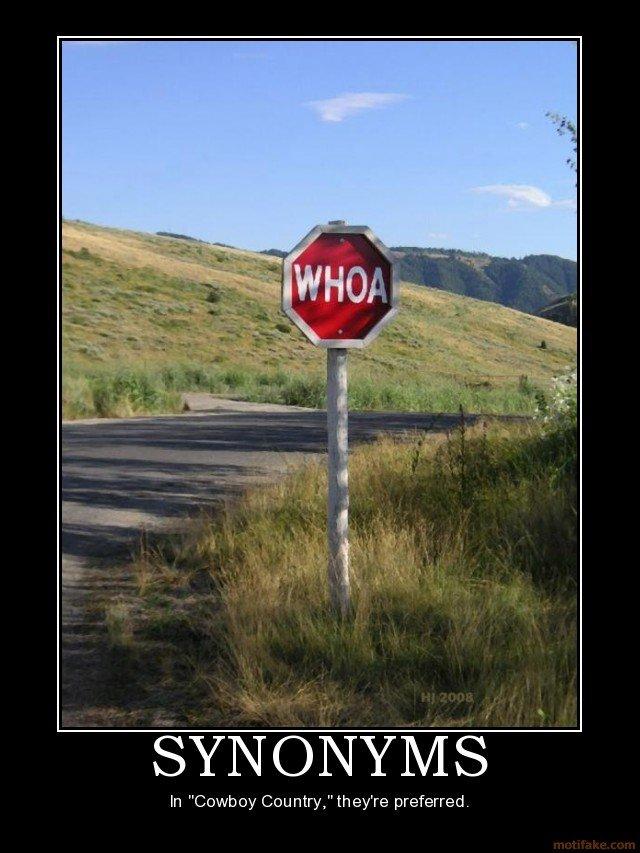 "WHOA!. WHOA THERE PILGRIM. spyro) iur) -)iran) vasi' In ""Cooh Gee nine"" ewe preferred."