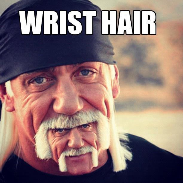 """wrist hair. hogans hulk. WRIST K' tr"""". Wut?"""