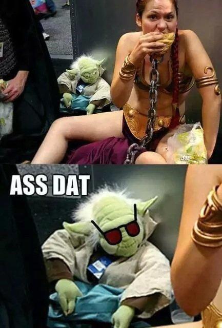 Yoda you dog. .. Damn, Yoda is Dagobahd to the bone.