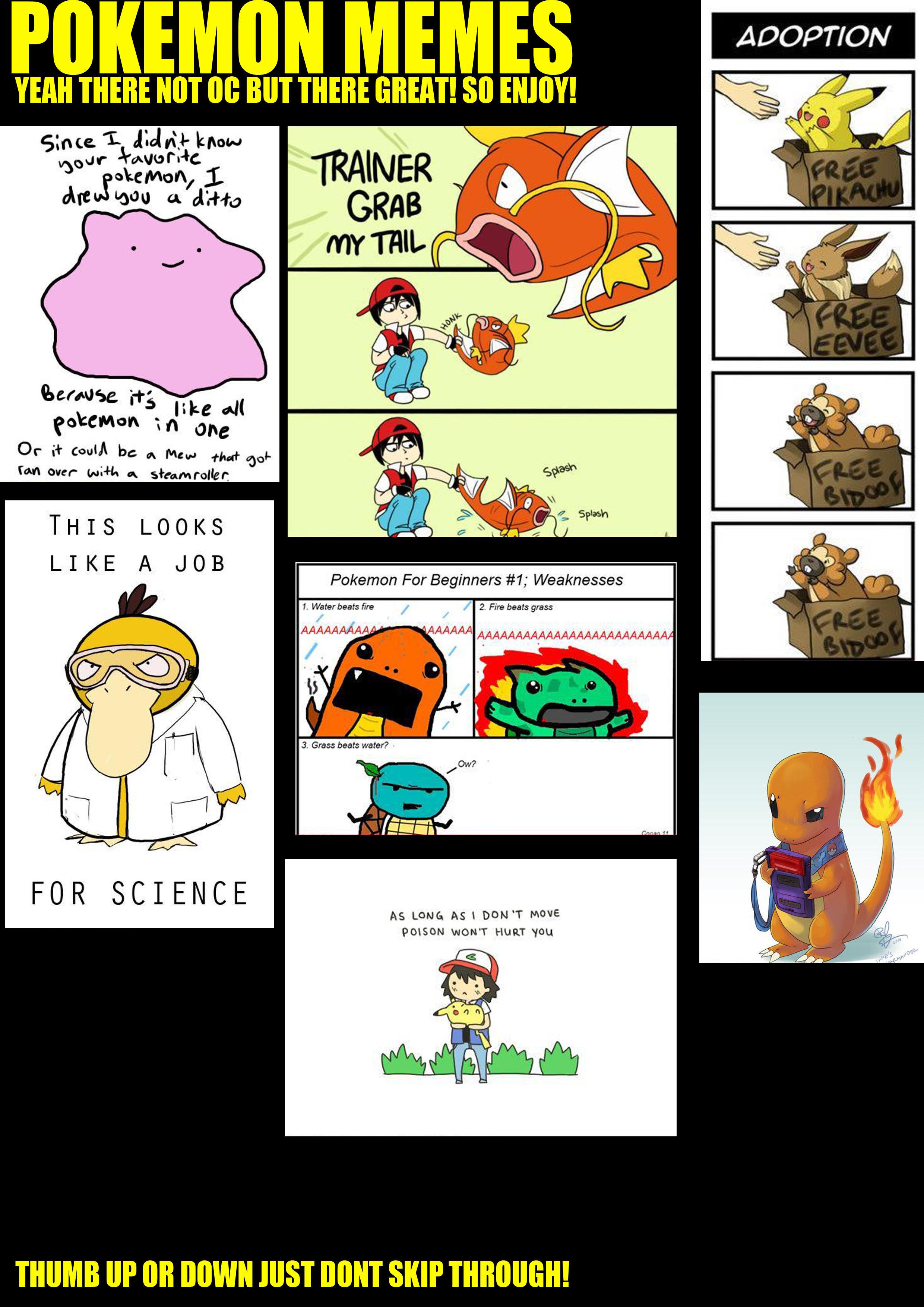 Pokemon Meme Comp