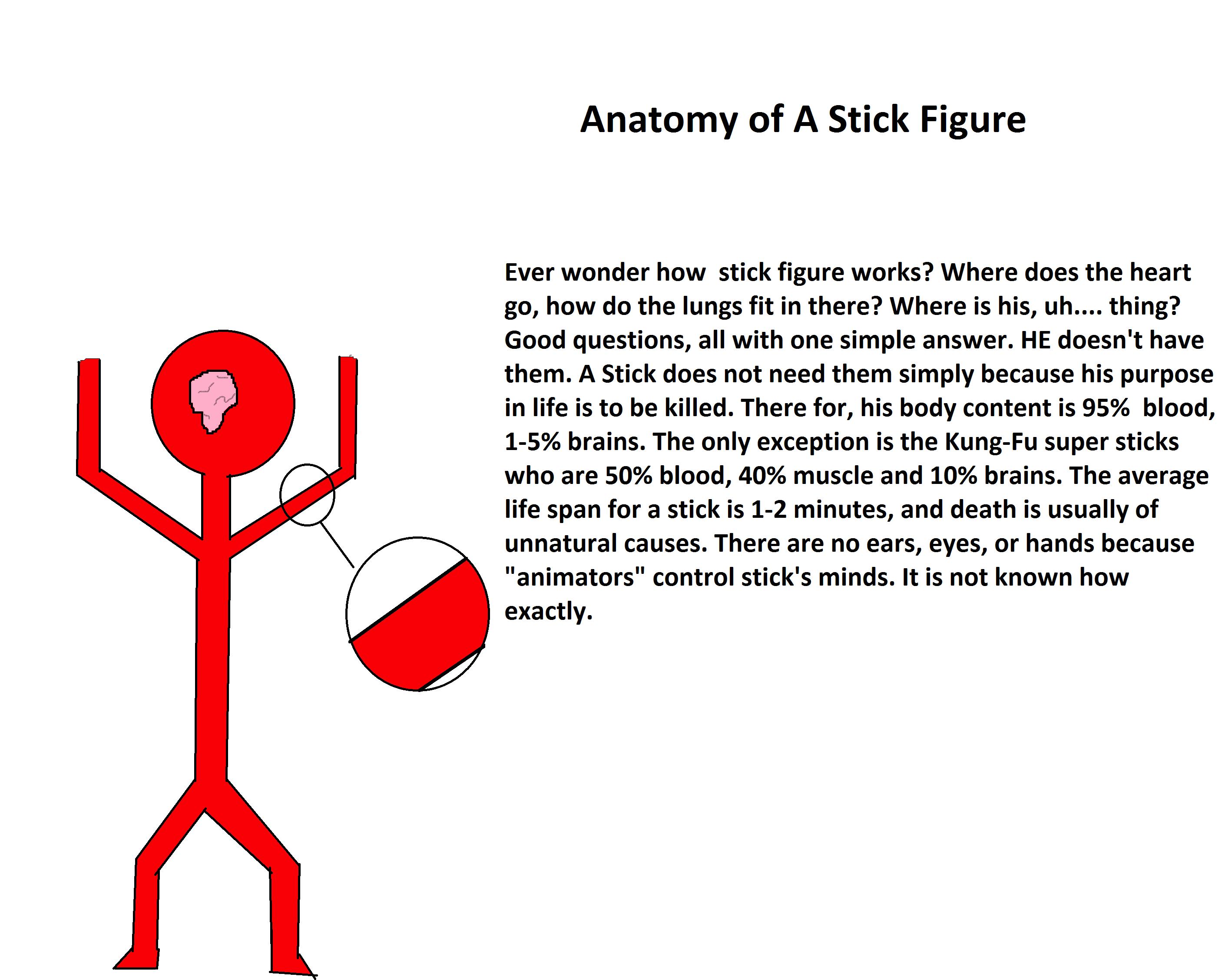 Anatomy of a Stick