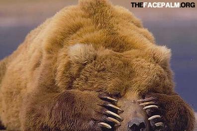 Bear face palm