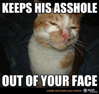 Cool+cat+carl+new+meme_d083fc_3229116 cool cat carl