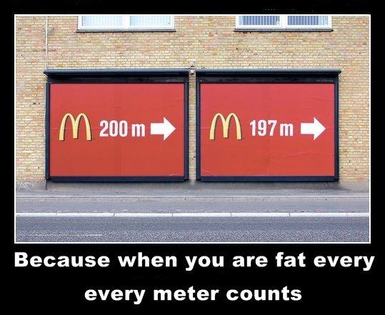 Fat Counts 39