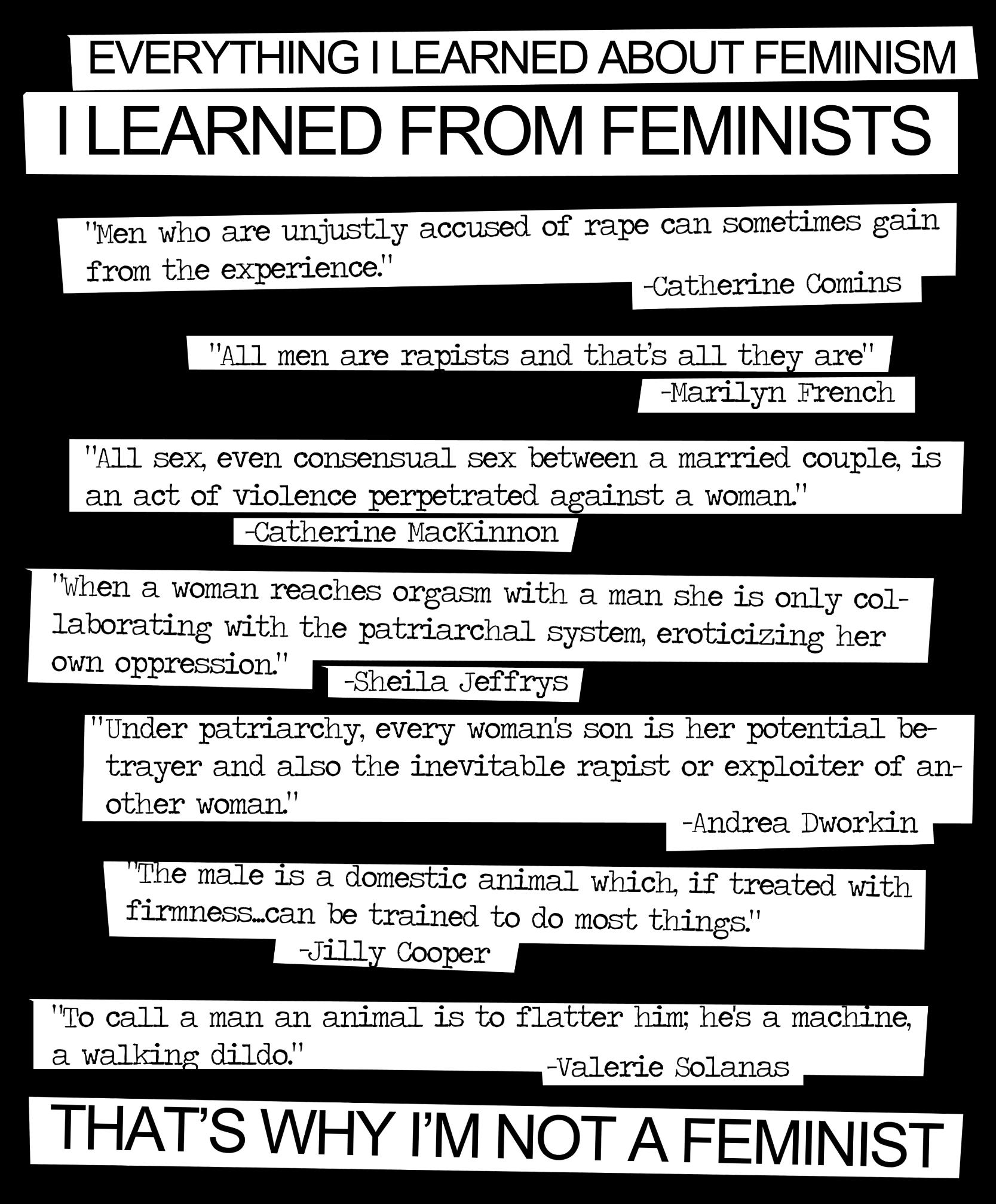 Rape Quotes Feminism Quotes From Feminists