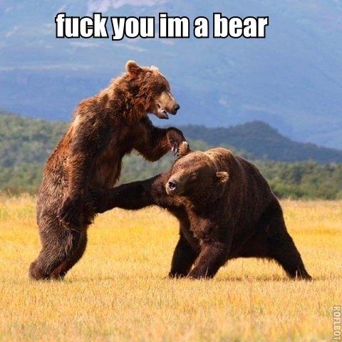 Bear fuck bear