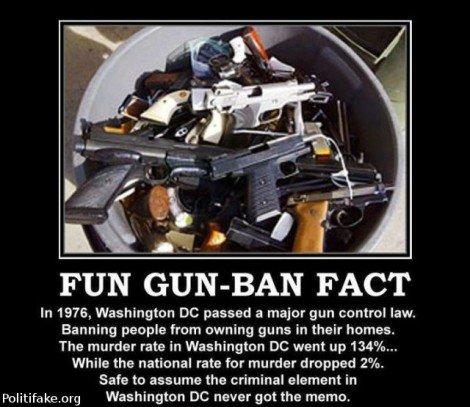 gun ban argument