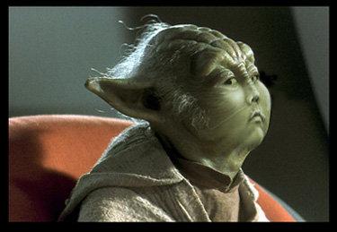 Weird Yoda Pictures 5