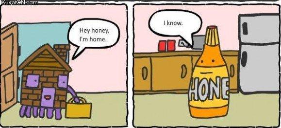 Bildergebnis für honey home comic
