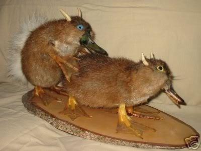 horrifying stuffed animals