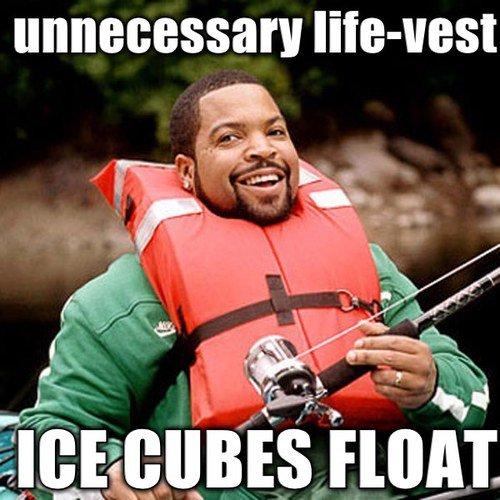Damn Meme Ice Cube