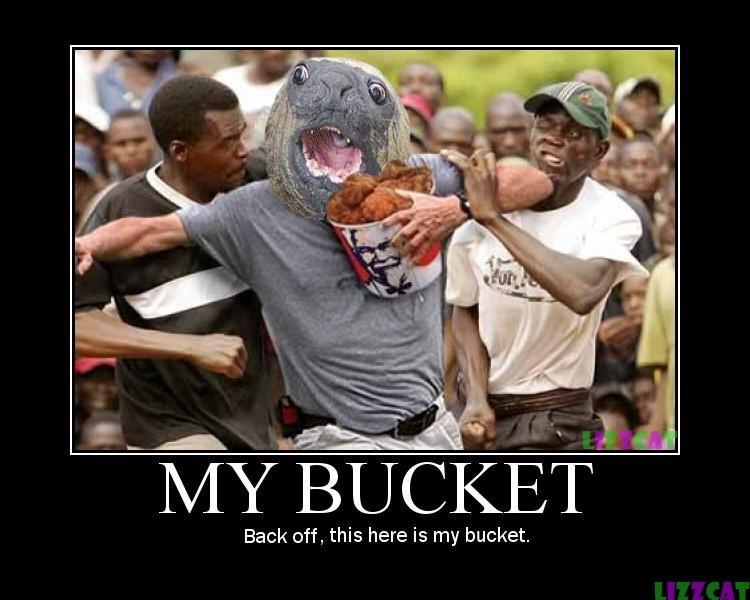 Image result for funny bucket meme