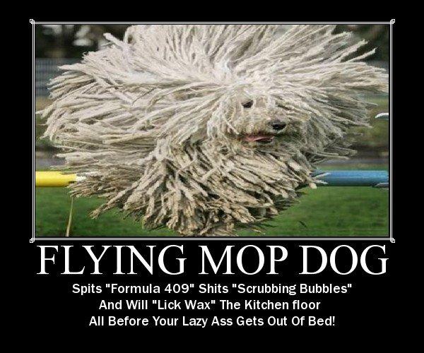 Puli Dog Mop