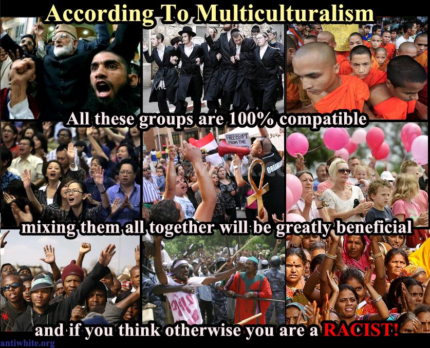 multiculturalism a problem or a benefit