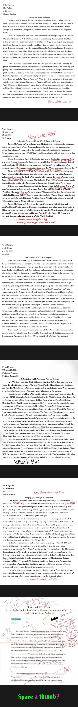 Peter nguyen essays comp