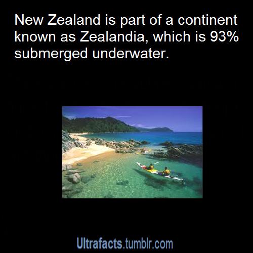 Random Fact Comp  #64