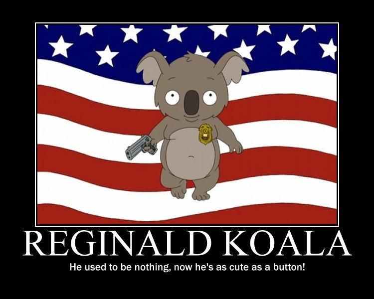 Reginald_b59acb_321008 reginald koala!