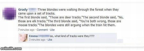 stoopid blondie