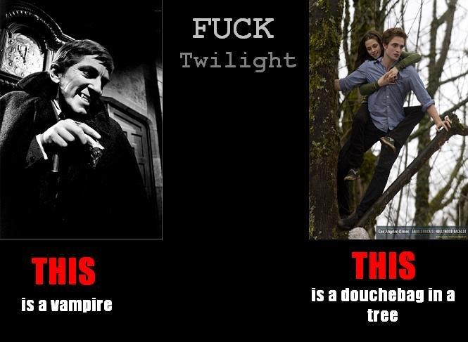 Twilight Sucks Ass 12