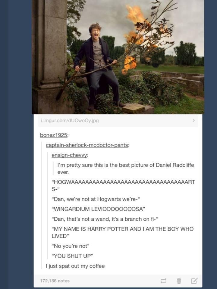 Harry potter spellbook of desires